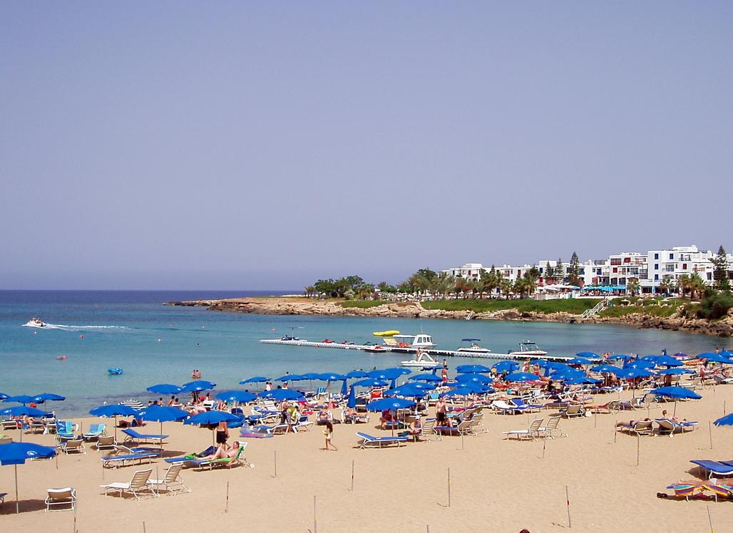 Пляж на кипре фигово дерево фото