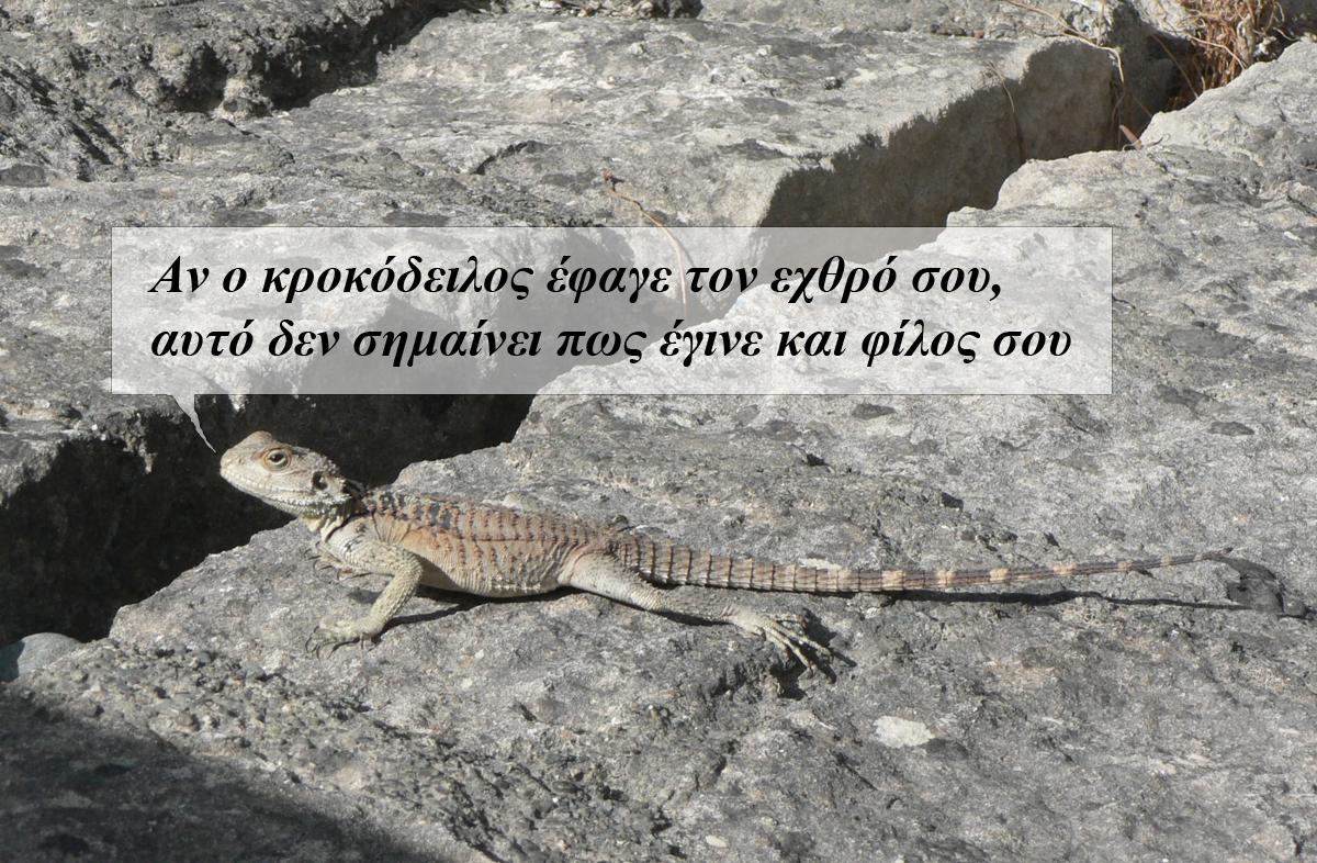 Если крокодил съел твоего врага это
