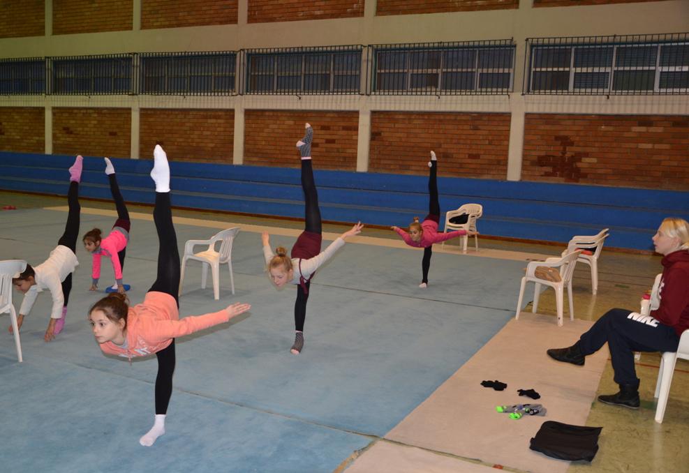 знакомство с гимнастикой для детей