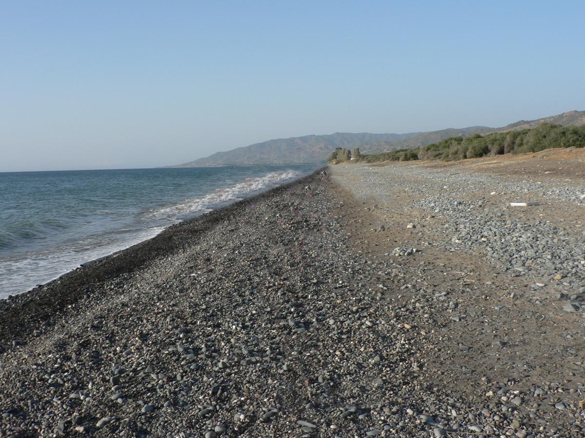 Дикий пляж фото города
